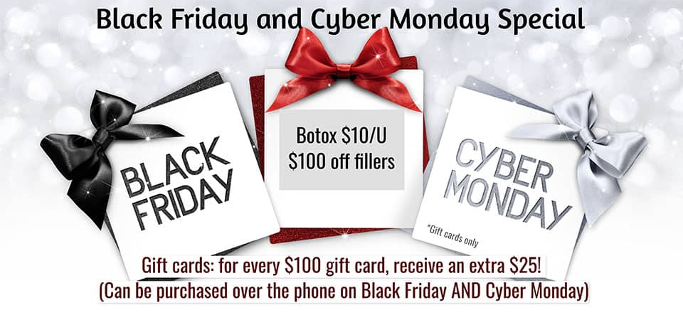 Black Friday and Cyber Monday Special